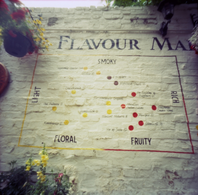 The Flavour Map